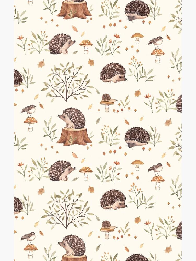 Little Hedgehog by NinaStajner