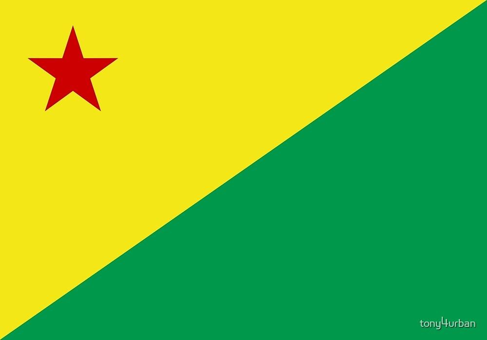Acre flag Brazil by tony4urban