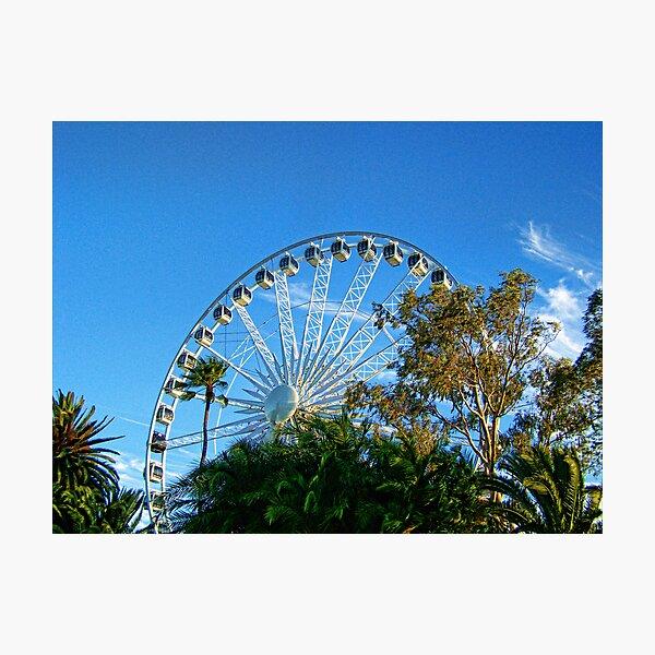 Perth Foreshore Ferris Wheel Photographic Print