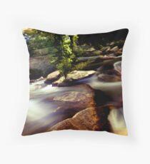 pinscape stream Throw Pillow