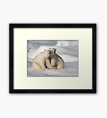 Polar Bear Brothers Framed Print