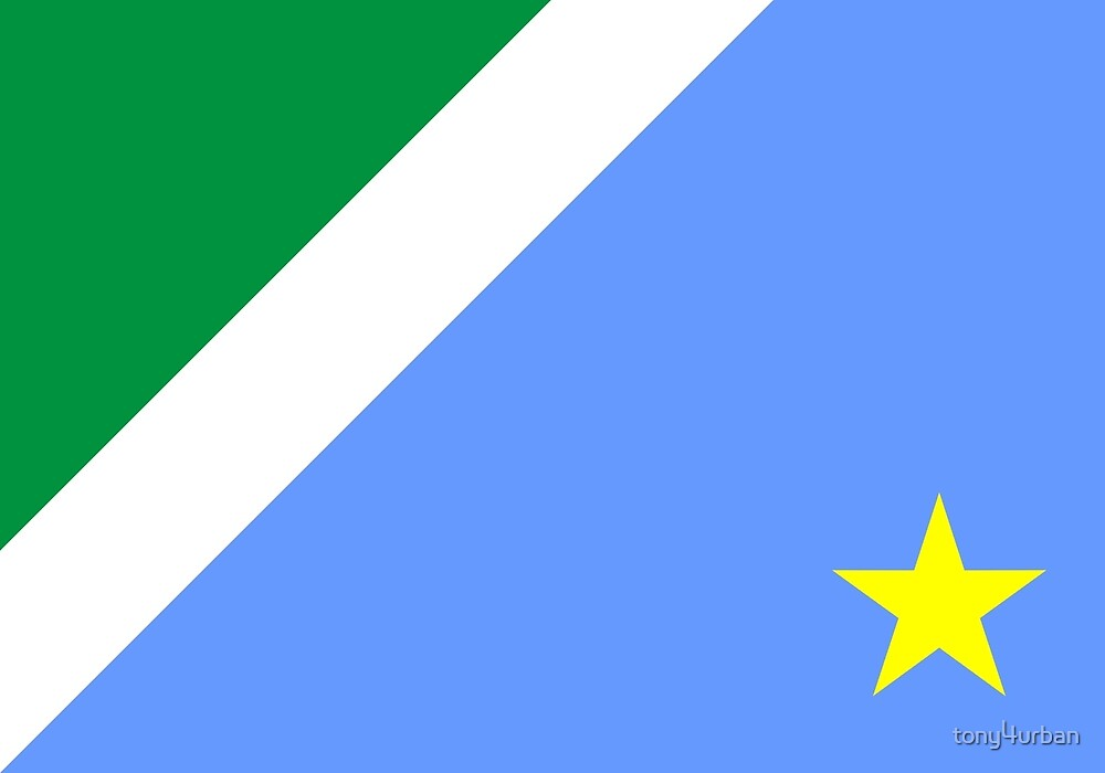 Mato Grosso do Sul flag Brazil by tony4urban