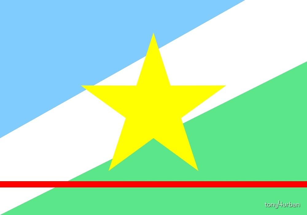 Roraima flag Brazil by tony4urban