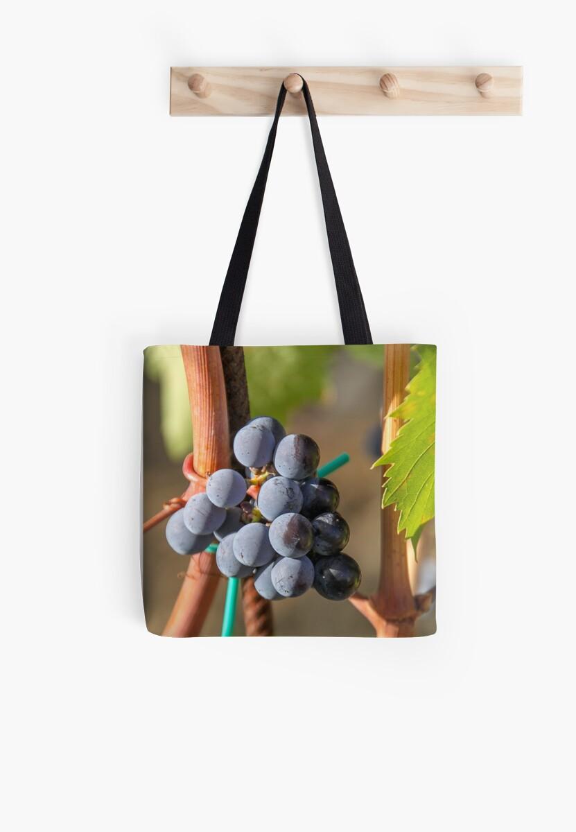 Grape Vine by ETBtravelphotog