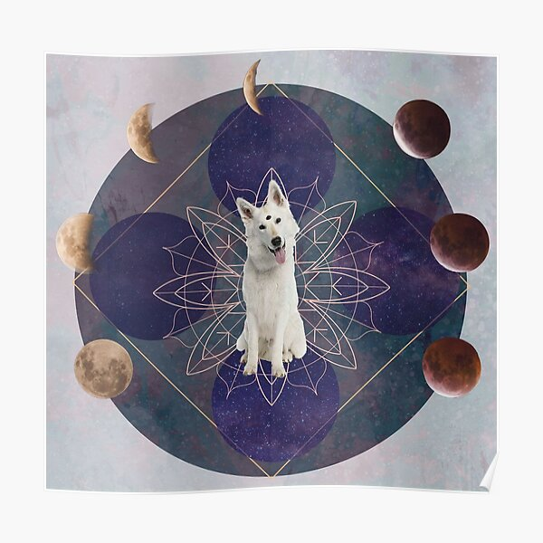 DoogyMystic Dog  Poster
