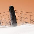 Winter Drifts by TingyWende
