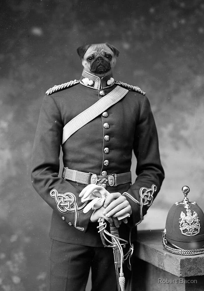Sergeant Puppers by Robert Bacon