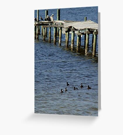 Winter haven Greeting Card