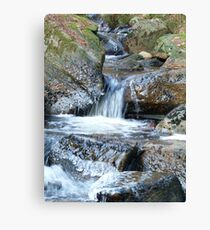 Ice Age - Water Descending Canvas Print