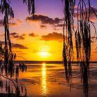 Paradise Sky by tracyleephoto