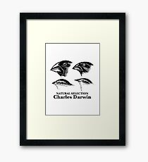 Charles Darwin - Natural Selection Framed Print
