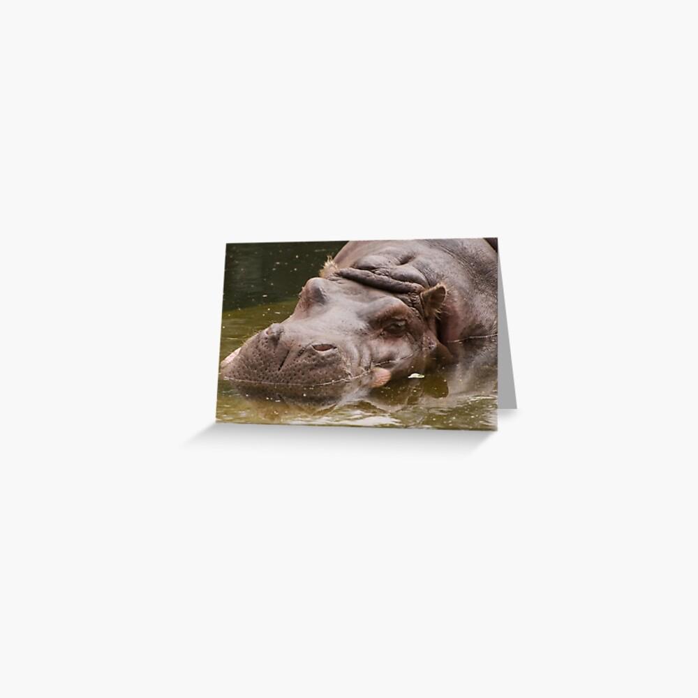 Riesiges gelangweiltes Nilpferd Grußkarte