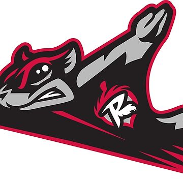 Richmond Flying Squirrels by archimides-go