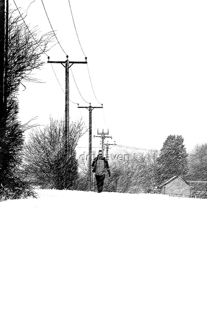 Caught in the snow by drbeaven