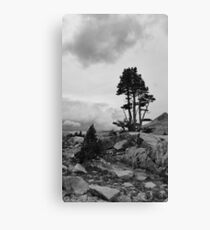 Desolation Wilderness, Nevada Canvas Print