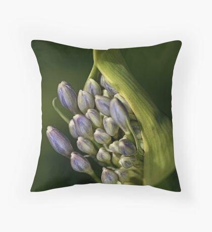 Agapanthus - Life Begins Throw Pillow