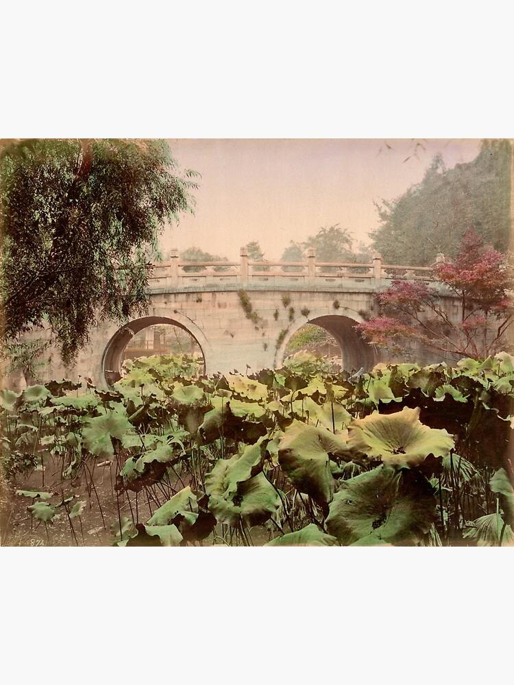Spectacle bridge of Otani, Kyoto by Fletchsan