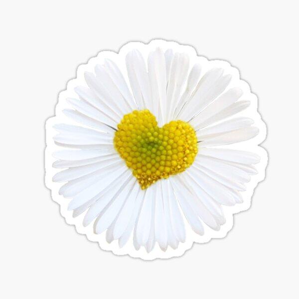 Daisy Love Sticker