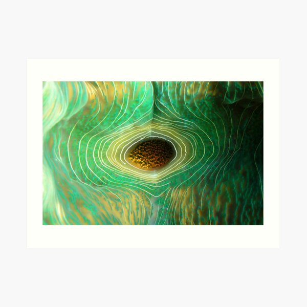 Spiral Eye Art Print