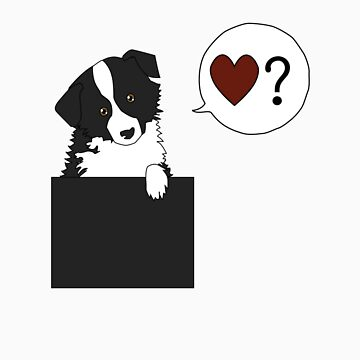 <3? Border collie by luckydog