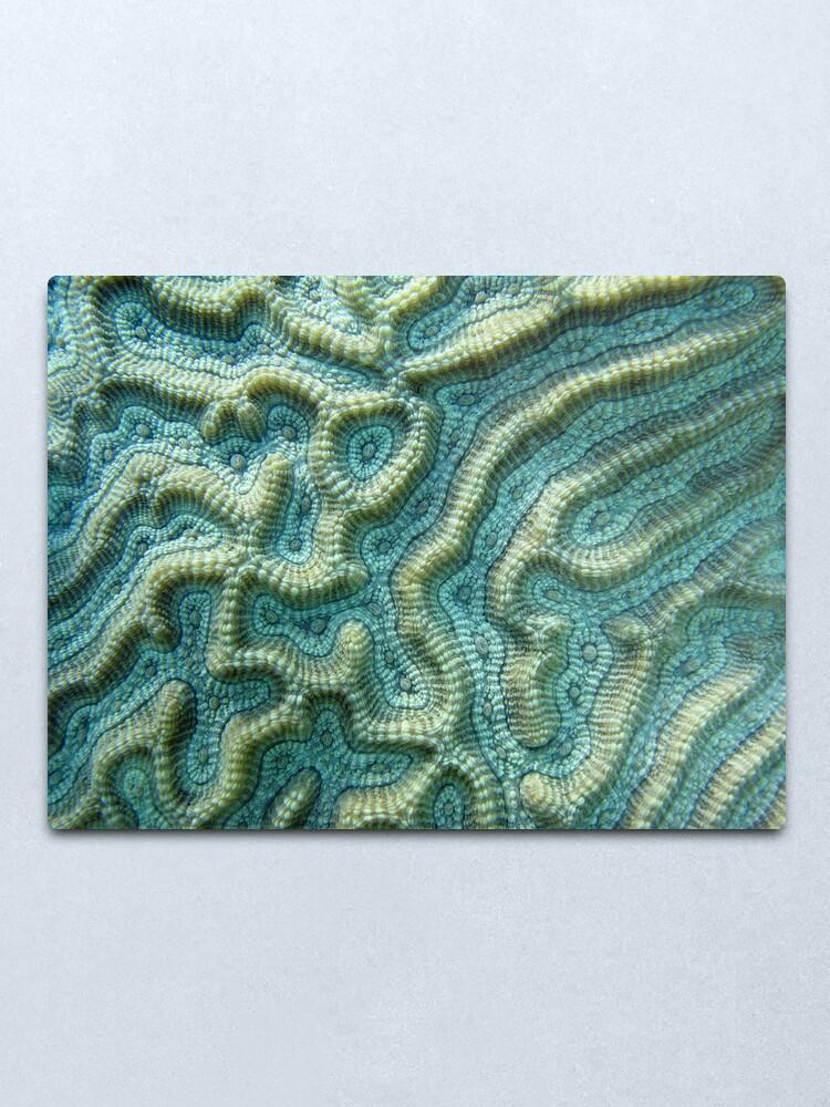 Alternate view of Platygyra Maze Metal Print