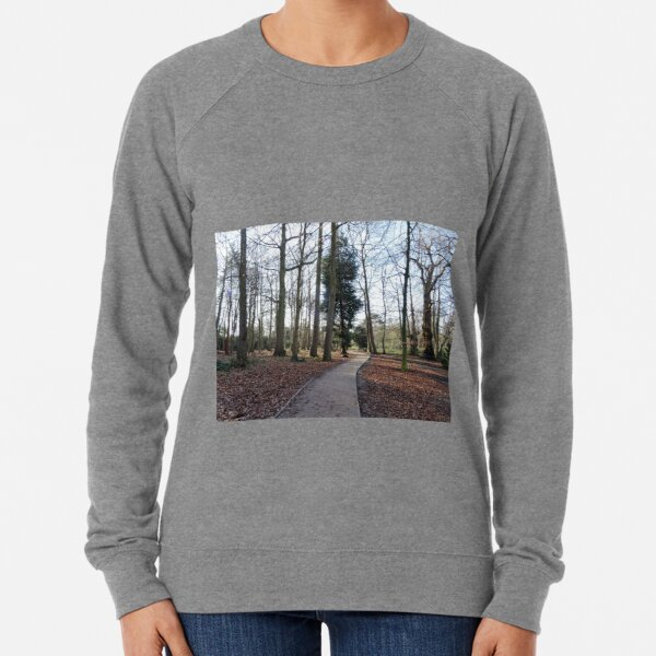 Lovely path and walk in the woods Lightweight Sweatshirt