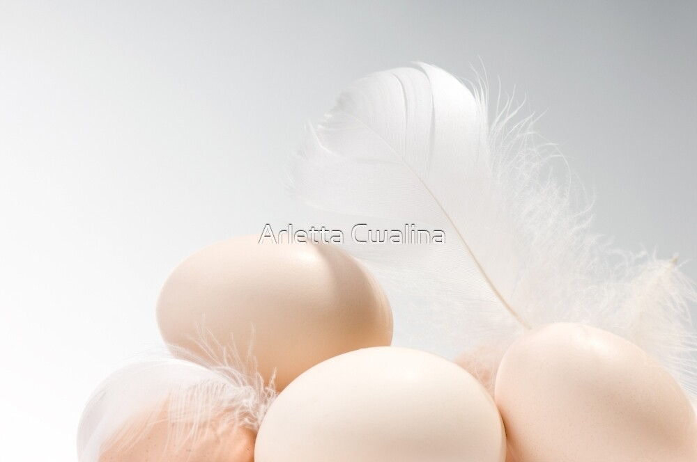 Eggs heap and white fluffy feather by Arletta Cwalina