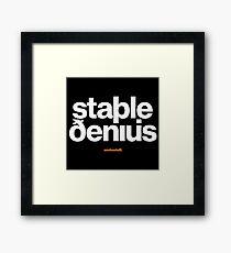 16229-03-BDK – Stable Genius – Icelandic (White) Framed Print