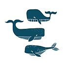 three hand drawn whales. by katiesplace