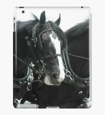 Shire iPad Case/Skin