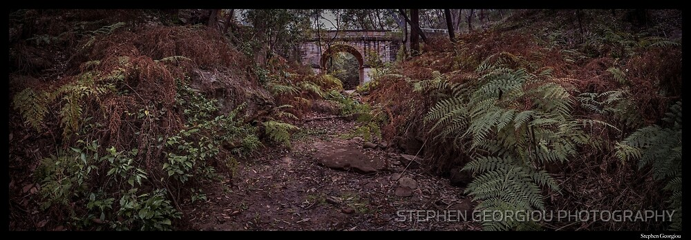 Lennox Bridge after the Bushfire 2018 by STEPHEN GEORGIOU PHOTOGRAPHY