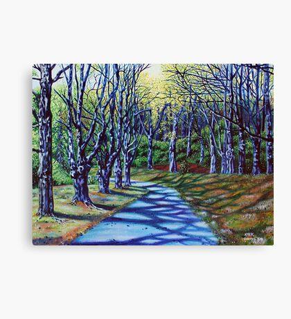 'Early Spring Morning, Bass Lake' Canvas Print