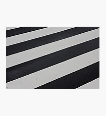Industrial Zebra Photographic Print