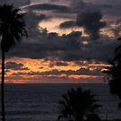 Sunset Tonight 2-7-09 by Gloria Abbey