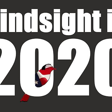 Hindsight is 2020 - Bernie Bird by bethcentral
