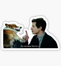 Brooklyn Nine Nine Sticker