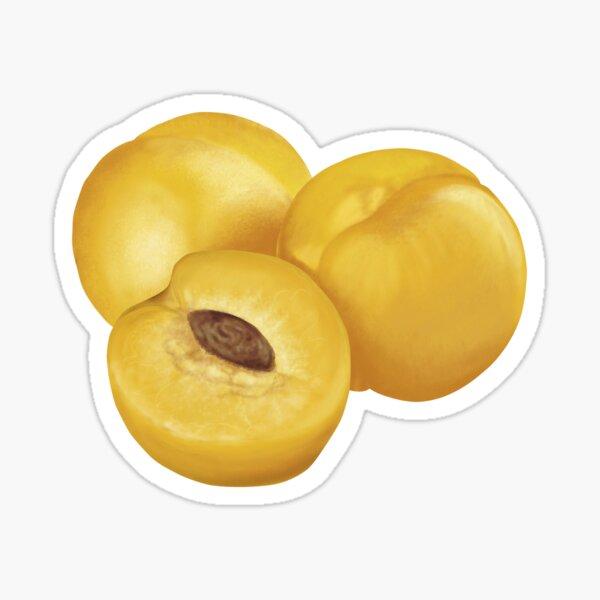 Nectarine Sticker