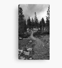 Pacific Crest Trail, Nevada Canvas Print