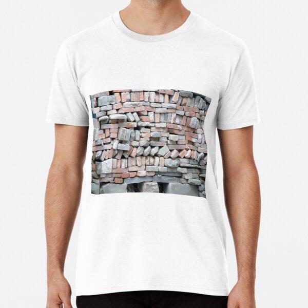 OpticalIllusion, VisualPhenomena, structure, framework, pattern, composition, frame, texture, design, tracery Premium T-Shirt