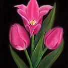 Tulips by MadameCat-Art