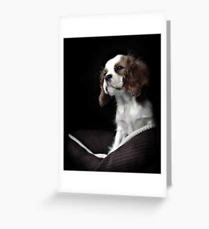 Charlie Greeting Card