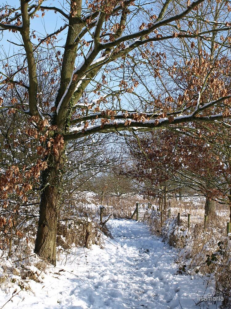 Snow Scene 3 by lisamaria