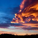 A chinese dragon in the sky by -Sunny-