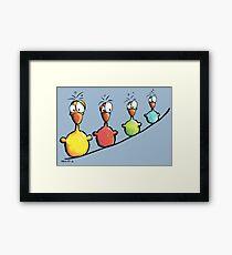 Colorful Birds Framed Print