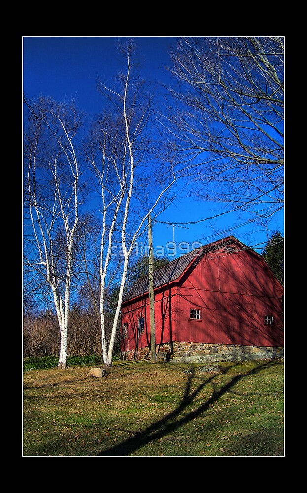 Conneticut Barn I by carlina999