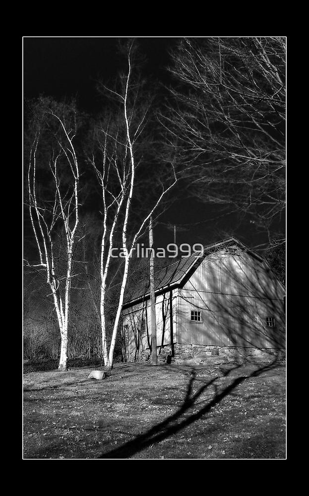 Conneticut Barn I (B&W 1) by carlina999