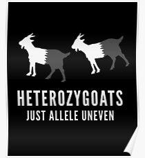 Hereozygoats gerade Allele uneinheitliche Ziegen-Genetik-Wissenschafts-Tiere lustiger Witz Poster