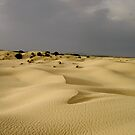 Dunes by Kasia  Kotlarska