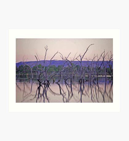Dusk - Lily Creek Lagoon, Kununurra, Western Australia Art Print