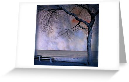 under the tree (2) by Angel Warda